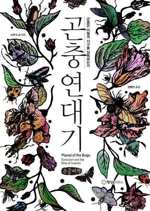 곤충 연대기 (큰글씨책)